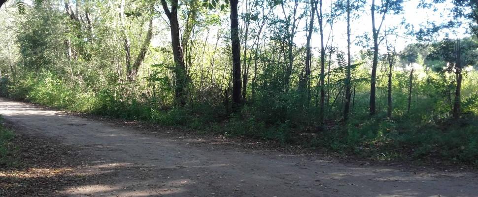 Lote a 150 mts de Ruta 38 en Villa Parque El peñón Oeste de Casa Grande